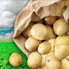 FLN Stowe Potato Sales